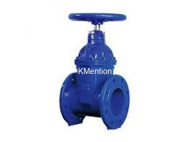 CAST IRON ( CI ) VALVES SUPPLIERS IN KOLKATA - 1/1