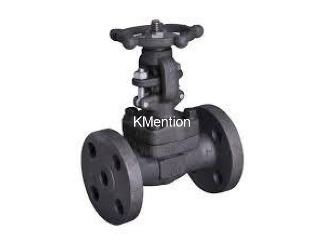 STEAM VALVES SUPPLIERS IN KOLKATA - 1/1