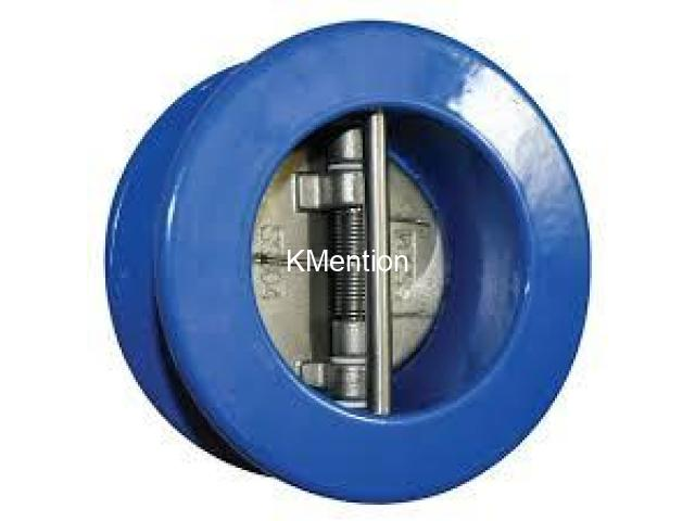 DUAL PLATE CHECK VALVES IN KOLKATA - 1/1