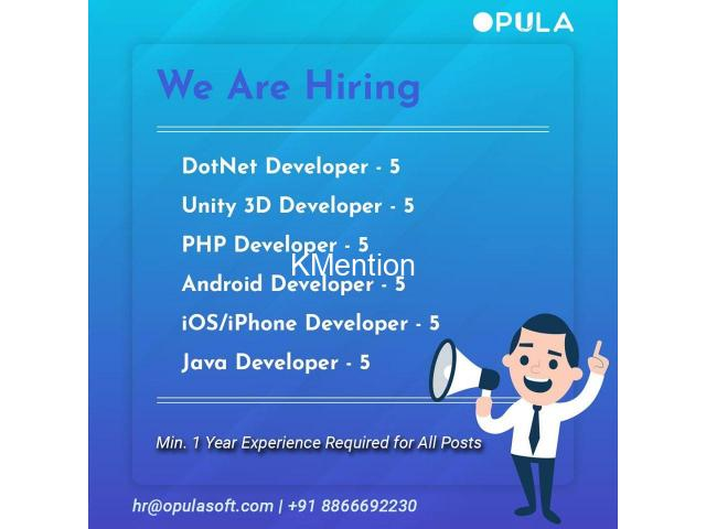 We are hiring developers for software company - 1/1