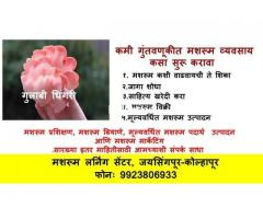 Mushroom Cultivation Training in Jaysingpur, Kolhapur, Sangli, Satara, Miraj