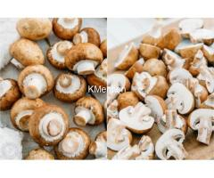 Fresh mushrooms supplier and dry mushrooms supplier