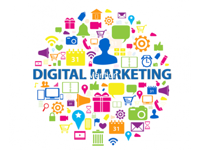 Digital Marketing Internships and certificate course in Jaysingpur - 1/1